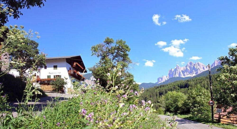 Austillerhof – Urlaub auf dem Bergbauernhof in St. Peter