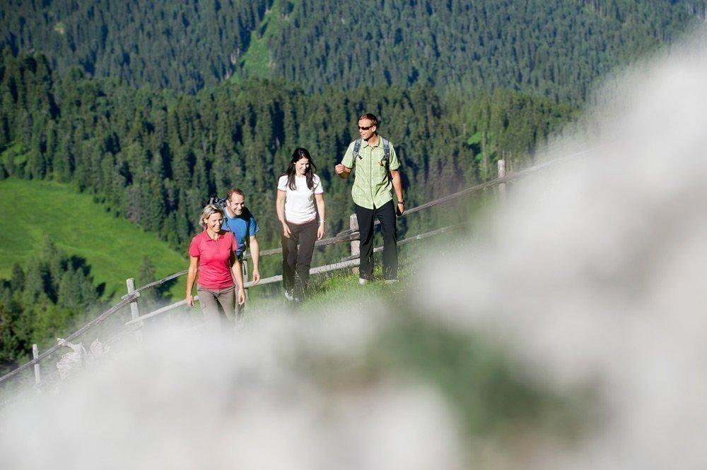 Traumhafte Wanderpfade und attraktive Ausflugsziele